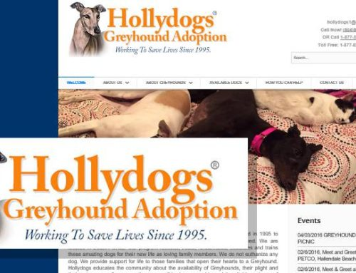 Greyhound Adoption Agency Website